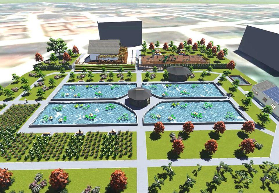 turkiyenin-ilk-bonsai-serasi-ve-en-buyuk-nilufer-havuzu-boluda-kuruluyor-resim